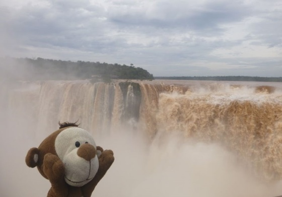 Mucuvinha nas Cataratas do Iguaçu